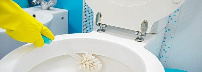 از بین بردن جرم توالت فرنگی؛ در کمتر از یک ساعت