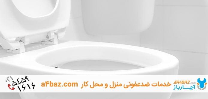تمیزکردن توالت فرنگی