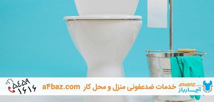 تمیزکردن و جرم گیری توالت فرنگی